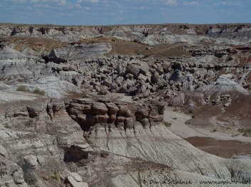 Petrified Forest NP